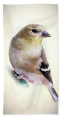 Yellow Finch Beach Sheet