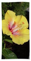 Yellow Hibiscus Beach Sheet
