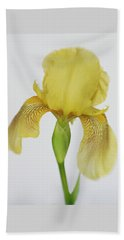Beach Towel featuring the photograph Yellow Iris A Symbol Of Passion by David and Carol Kelly