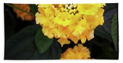 Beach Towel featuring the photograph Yellow Lantanas Along The Scenic Drive by Mr Photojimsf