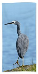 Beach Towel featuring the photograph Yellow Legs 01 by Kevin Chippindall