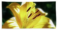 Yellow Lily In Sunlight Beach Towel
