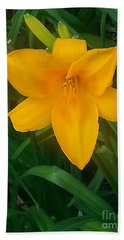 Yellow Lily Beach Sheet