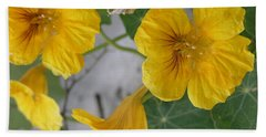 Yellow Nasturtium Beach Towel