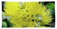 Yellow Ohia Flowers - Hawaii  Beach Towel