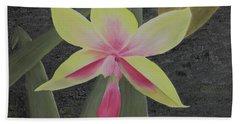 Yellow Orchid Beach Sheet