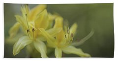 Yellow Rhodo Beach Towel