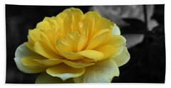 Yellow Rose In Bloom Beach Sheet