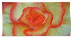 Yellow Rose With Red Tips Beach Towel
