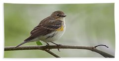 Yellow-rumped Warbler Beach Towel