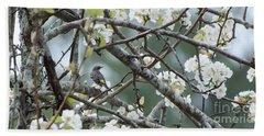 Yellow-rumped Warbler In Pear Tree Beach Towel