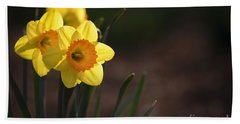 Beach Towel featuring the photograph Yellow Spring Daffodils by Andrea Silies