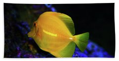 Beach Towel featuring the photograph Yellow Tang by Anthony Jones