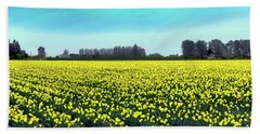 Yellow Tulip Fields Beach Towel by David Patterson