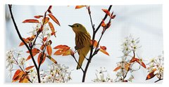 Yellow Warbler Beach Sheet