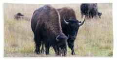 Yellowstone Bison Beach Towel