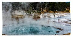 Beach Towel featuring the photograph Yellowstone Colors #2 by Scott Read
