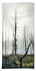 Yellowstone N P Beach Sheet