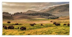Beach Towel featuring the painting Yellowstone National Park Lamar Valley Bison Grazing by Christopher Arndt