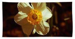 Yesteryear Daffodil Beach Towel