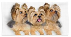 Beach Towel featuring the painting Yorkie Trio by Catia Lee