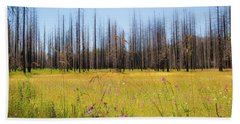 Yosemite Juxtaposition By Michael Tidwell Beach Sheet