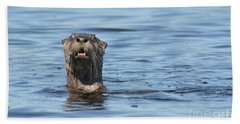 You Otter Know Beach Towel