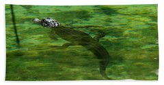 Young Alligator Beach Towel