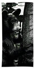 Young Black Bear In Tree  Beach Towel