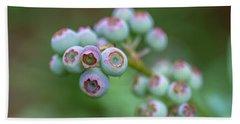 Young Blueberries Beach Sheet