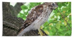 Young Red Shouldered Beach Towel