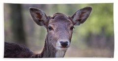 Young Deer Beach Sheet