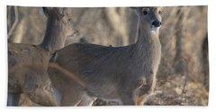 Young Deer In A Pack Beach Sheet