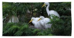 Young Egrets Fledgling And Waiting For Food-digitart Beach Towel