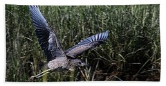 Beach Towel featuring the photograph Young Heron Takes Flight by William Selander