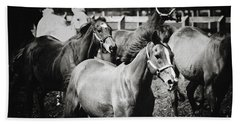 Young Horses On The Pasture Beach Towel