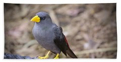 Young Myna Beach Towel