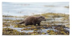 Young Otter Beach Towel