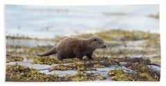 Young Otter Beach Sheet