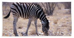 Beach Towel featuring the digital art Young Plains Zebra by Ernie Echols