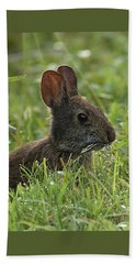 Young Rabbit Dining Beach Sheet