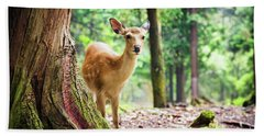 Young Sika Deer In Nara Park Beach Sheet