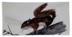 Young Squirrel Beach Towel