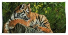Beach Towel featuring the painting Young Tiger Resting On Rock by David Stribbling