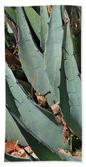 Yucca Leaves Beach Sheet