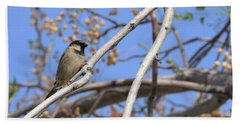 Yucca Valley House Sparrow  Beach Towel by Angela J Wright