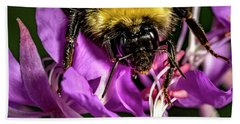 Beach Towel featuring the photograph Yummy Pollen by Darcy Michaelchuk