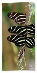 Zebra Butterflies Hanging On Beach Sheet
