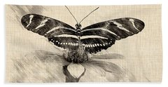 Zebra Butterfly Sketch Beach Towel