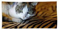 Zebra Cat Beach Sheet